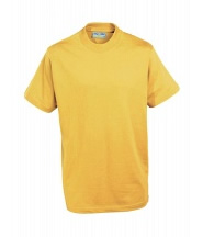 P.E. T-Shirt - Beacon (Sunflower Yellow) - Rothley C of E Academy